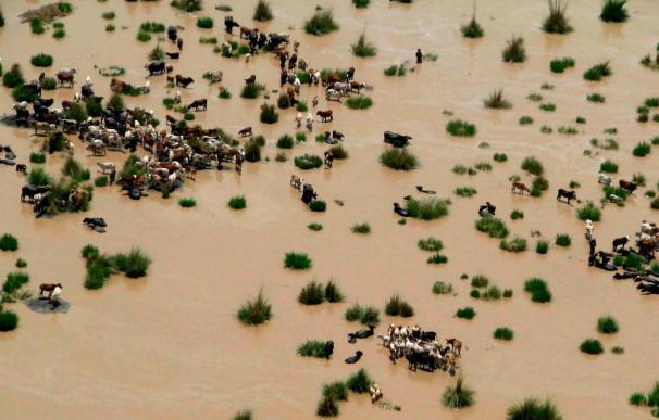 Suben a 800 los muertos por inundaciones en Pakistán en los últimos cuatro días