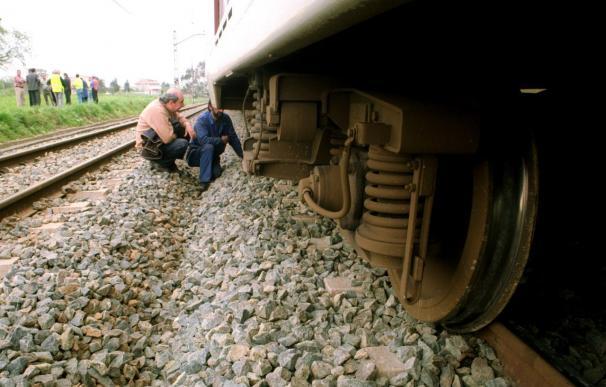 Un tren atropella a tres vacas, causa un retraso de 20 minutos y obliga al traslado de los viajeros