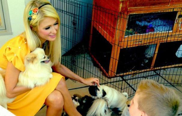 Paris Hilton cumple el deseo de un niño enfermo