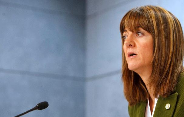 """El Gobierno vasco afirma que la """"amenaza de ETA sigue presente en nuestra sociedad"""""""