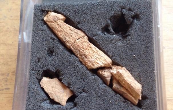 Encuentran dos arpones para la pesca de hace 15.000 años en Alòs de Balaguer