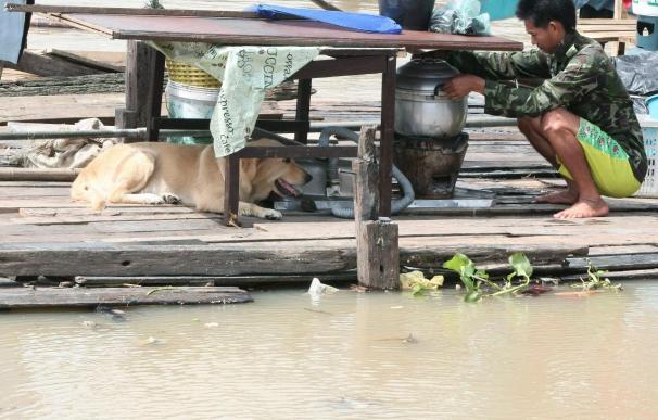 Se eleva a cien el número de muertos por las inundaciones en Tailandia