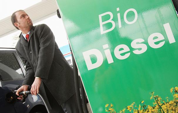 La importación masiva de biodiésel compromete la independencia energética que persigue el Gobierno