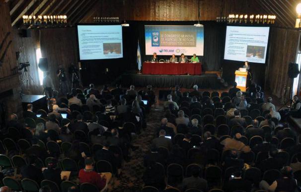 Integración multimedia e innovación, en el foco de atención de las agencias