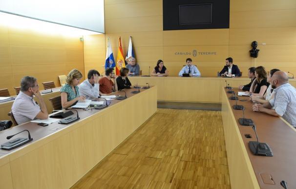 El Cabildo de Tenerife crea una unidad técnica dedicada al proyecto del muelle de Puerto de la Cruz