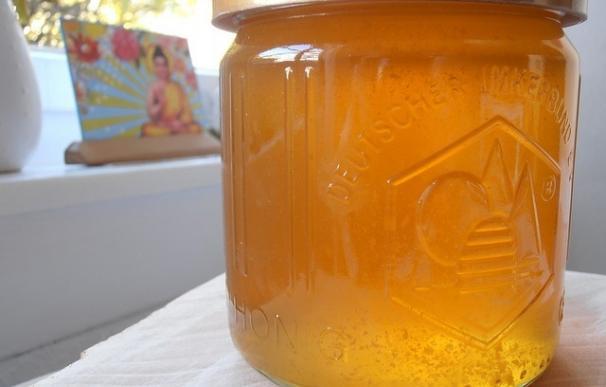 El crédito de las ayudas a la comercialización de la miel asciende a 695.128 euros, 152.000 menos de lo estimado