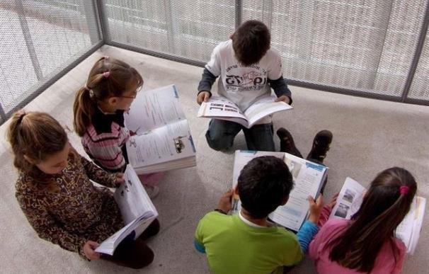 La Gonzalo Anaya pide a Educación que encargue de los gastos de los bancos de libros y los centros no adelanten dinero