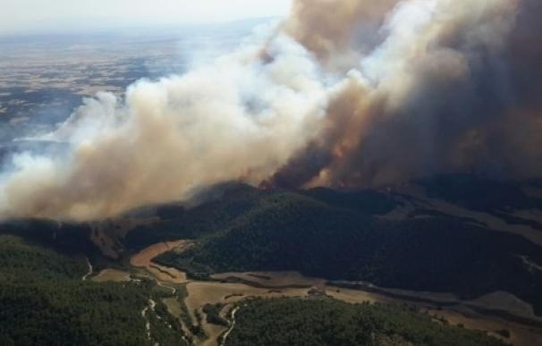 La comarca de las Cinco Villas (Zaragoza), restaurada tras el fuego que asoló casi 14.000 hectáreas en 2015