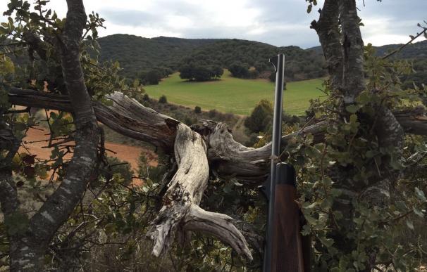 La media veda comenzará mañana con la oposición de los ecologistas a la caza de la tórtola