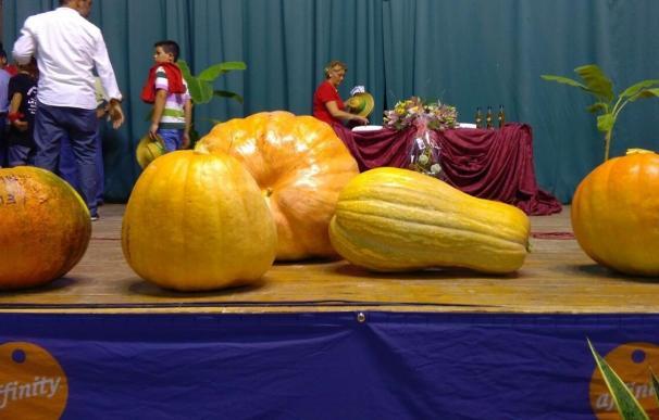 """Un vecino de Umbrete cultiva una calabaza de """"aproximadamente 100 kilos"""""""