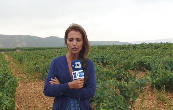 Paula Echevarría dice que es un lujo que ya se haga televisión de calidad en España