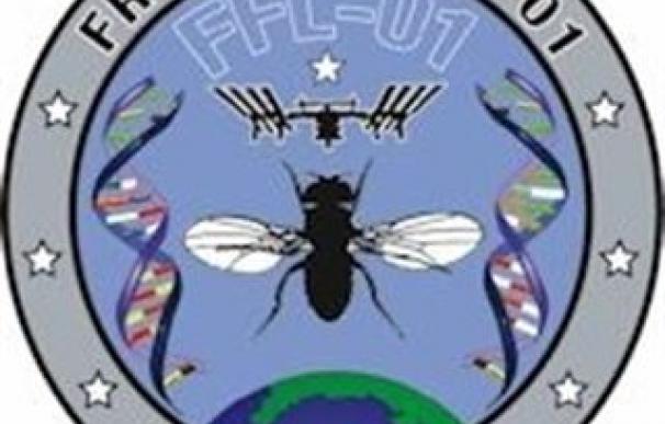 La NASA envía una tripulación de moscas a la Estación Espacial Internacional