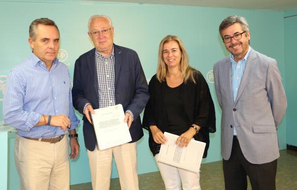 """El PP calcula en 400 millones de euros el """"perjuicio económico"""" de la trama de los cursos en la provincia"""