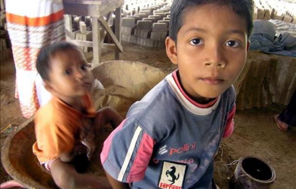 Organización denuncia 350 casos de trabajo infantil en Panamá