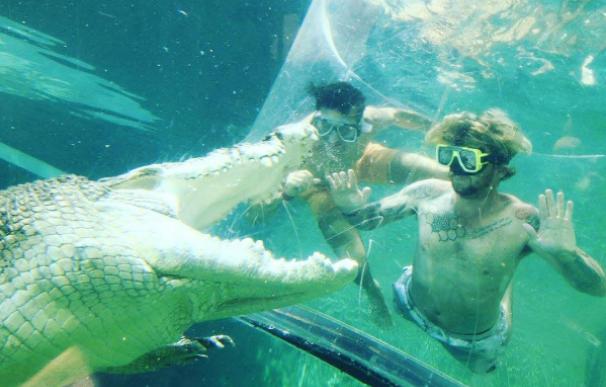 Nadar entre cocodrilos y salir ileso es posible con la 'jaula de la muerte'