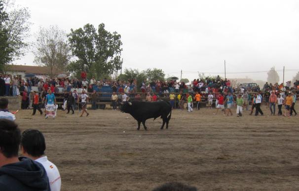 """López de Uralde (Equo) lamenta que aún hay gente que defiende """"agresivamente"""" el Toro de la Vega"""