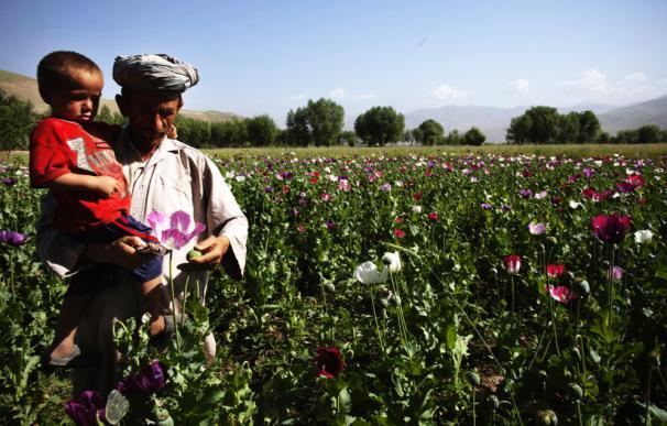 Rusia es el mayor mercado mundial de heroína, en donde se consume el 20% de la droga que sale de Afganistán.