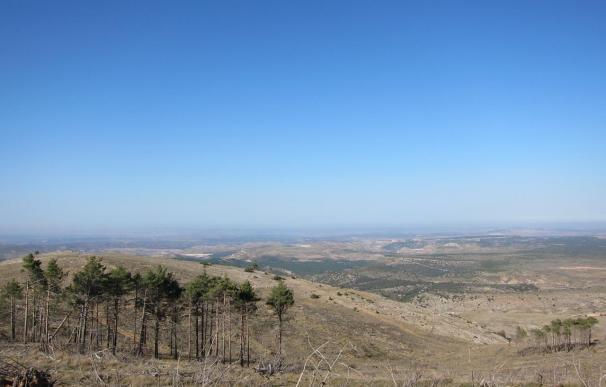 Coca-Cola impulsa un proyecto de recuperación hidroforestal con 20.700 árboles en las Cuencas Mineras de Teruel