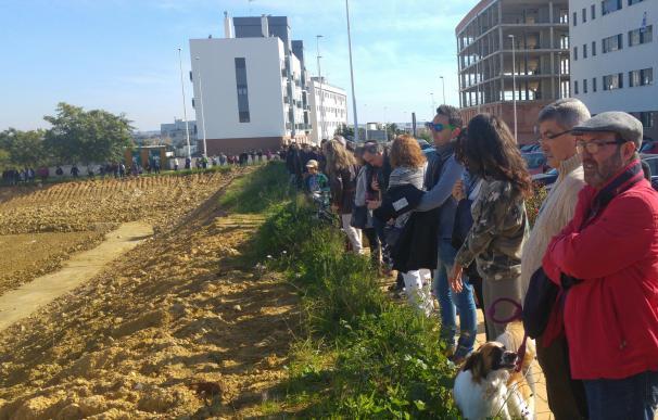 La Policía investiga el robo del vallado que protegía la zona arqueológica expoliada del Seminario