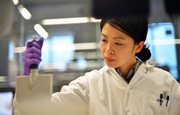 Hallan un interruptor genético de la inmortalidad de las células cancerosas