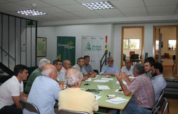 """Asaja afirma que los precios de la uva en la zona Montilla-Moriles ponen al viticultor en """"situación crítica"""""""