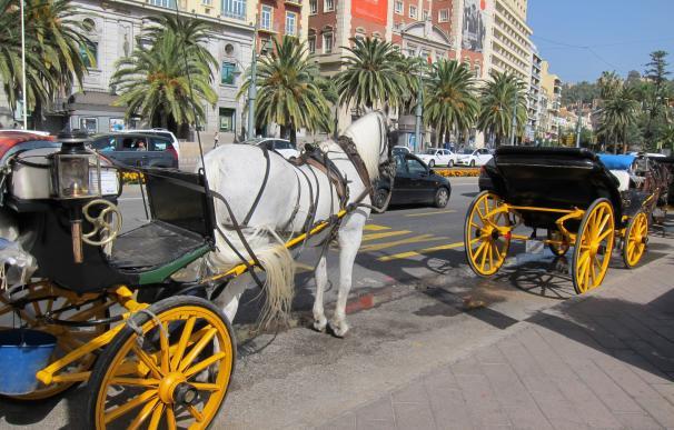El Ayuntamiento de Málaga rescata 20 licencias de coches de caballos dedicados a las visitas turísticas