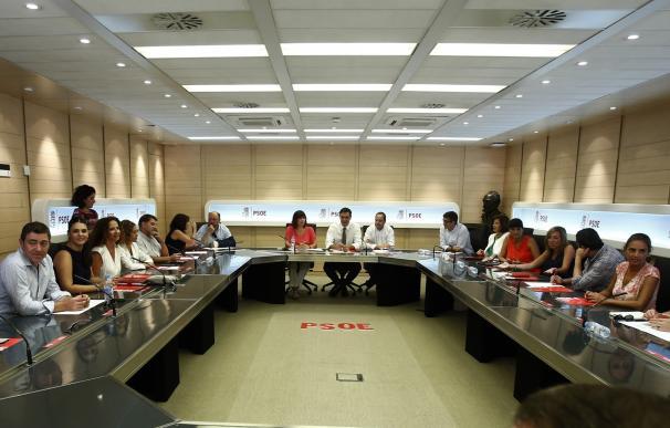 """El Comité Federal convocado para este sábado por la Ejecutiva """"en funciones"""" no incluye intervención de Pedro Sánchez"""