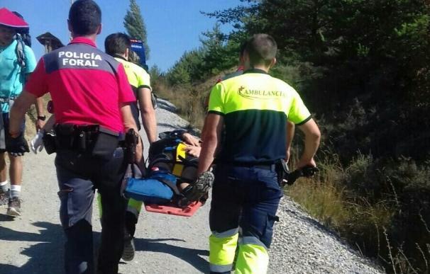 Herida una peregrina que hacía el Camino de Santiago en bici por la zona de Zubiri