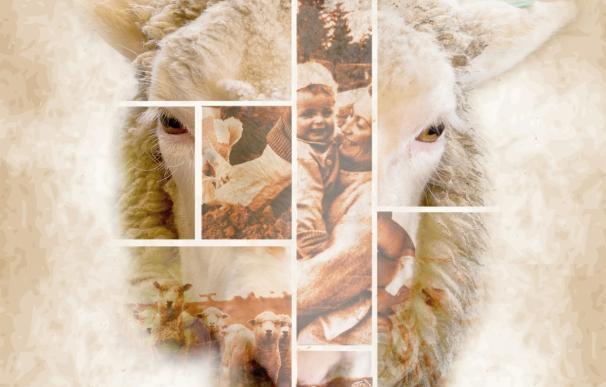 La Venta de Piqueras acoge este sábado la XII Fiesta de la Trashumancia