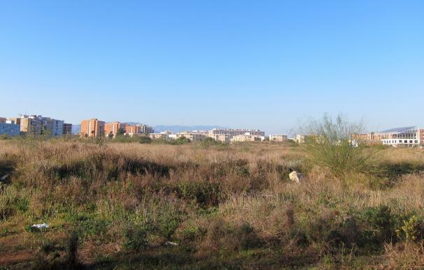 El Pleno de Málaga aprueba de nuevo seguir trabajando en la consulta ciudadana sobre los terrenos de Repsol