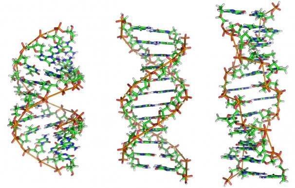 Científicos plantean una nueva teoría sobre cómo empezó la vida en la Tierra