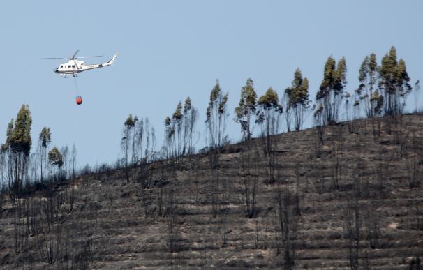 El pleno de la Diputación reclama la declaración de zona catastrófica para El Castillo de las Guardas