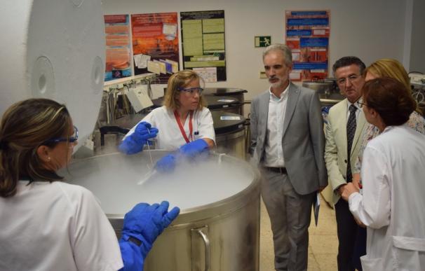 El Banco de Sangre de Cordón Umbilical de Andalucía, tercero a nivel mundial con 24.200 unidades