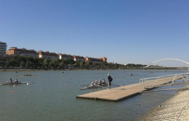 Algunas selecciones preparan en el Guadalquivir el Campeonato de Europa de Remo
