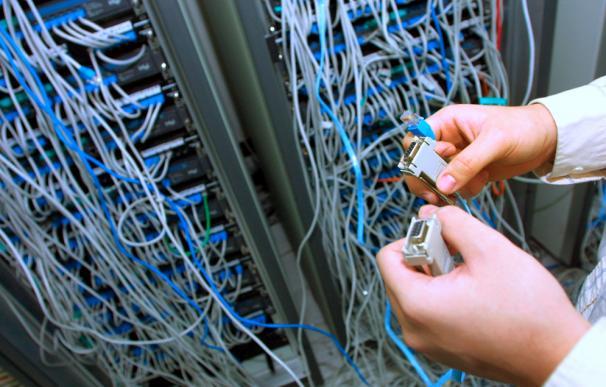 Conficker, el 'gusano' que podría acabar con internet en 15 minutos.