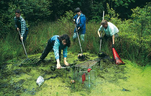 Varias personas limpian un lago