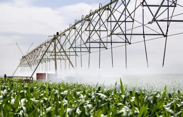 Regantes del Alto Duero rechazan la cesión de agua a los del Bajo Duero para garantizar los últimos riegos de la cosecha