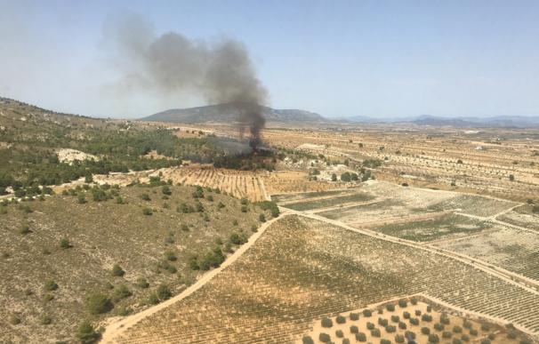 Efectivos del Plan Infomur trabajan para sofocar un incendio forestal declarado en la Sierra del Carche