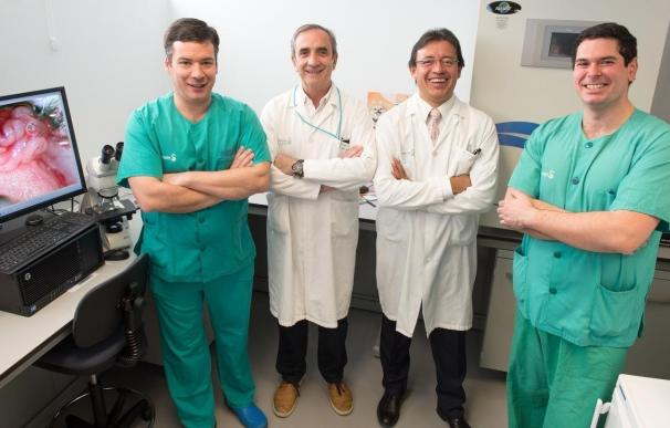 El Hospital Nacional de Parapléjicos consigue más fondos para estudiar la fibrosis que impide la reconexión neuronal