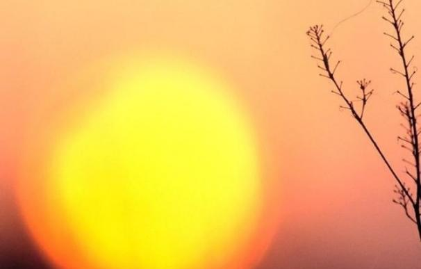 Canarias estará este domingo en riesgo amarillo por altas temperaturas que llegarán a los 36 grados