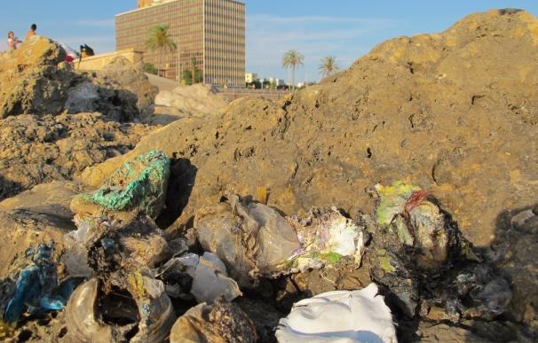 Aumentan un 65% los expedientes sancionadores tramitados por la Dirección General de Residuos
