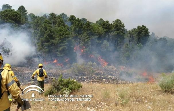 """La Junta prepara medidas contra la erosión, """"el mayor problema"""" tras el incendio de Segura"""