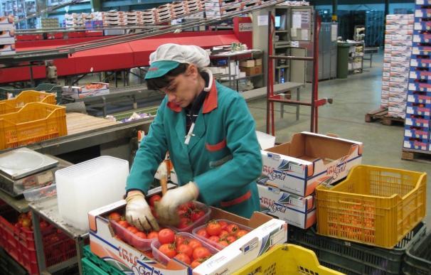 Andalucía bate récord en exportaciones de alimentos y bebidas con un alza del 15,5% en 2017