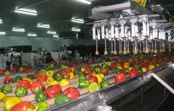 Las exportaciones crecen un 15,1% hasta los 2.214 millones en el primer semestre de este año