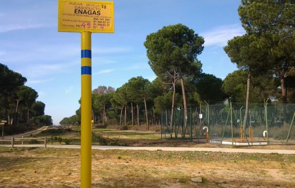PSOE registra una PNL para instar al Gobierno a revisar la DIA de los subproyectos de almacenamiento de gas en Doñana