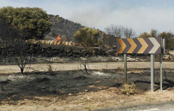 Abiertas al tráfico las dos carreteras cortadas por el incendio de Medinilla en Ávila