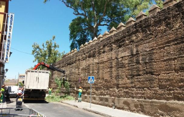 El Ayuntamiento concurre al 1,5% cultural para restaurar la muralla de la Macarena y la torre de Don Fadrique