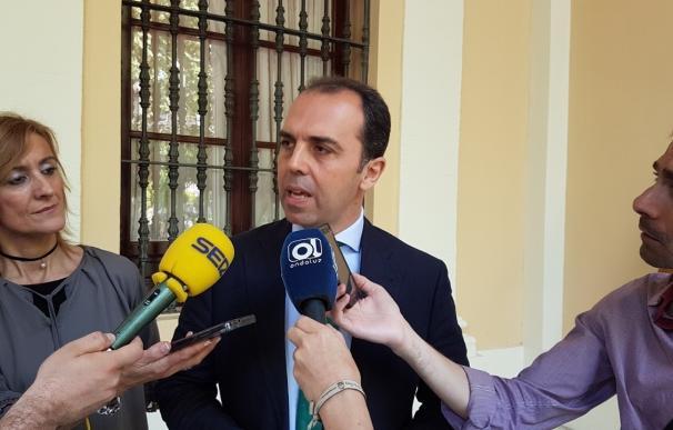 """Cs lamenta que """"tenga que ser la Unesco la que ratifique la chapuza"""" del proyecto de la Puerta del León"""