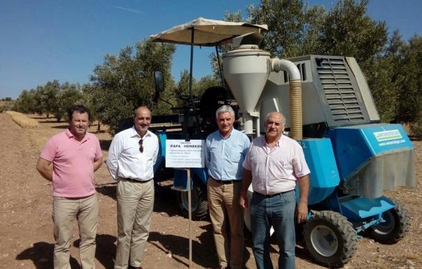 El Ifapa obtiene los primeros resultados sobre eficiencia del uso de agua en el cultivo mixto cebada-olivar