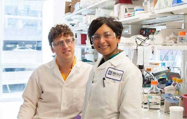 Sonia Vallabh y su marido Eric Minikel investigan para encontrar un remedio a la enfermedad mortal que muy probablemente desarrollará ella antes de 20 años.